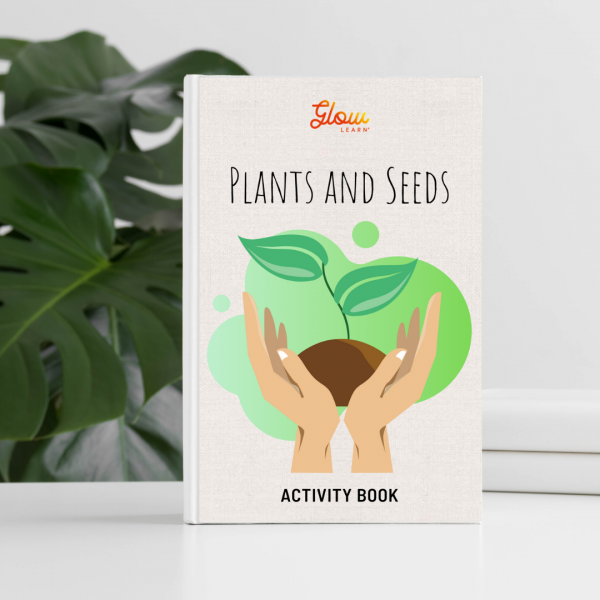 kids activities plants and seeds